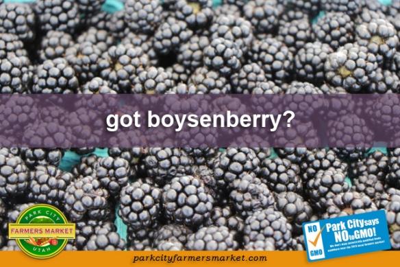 got boysenberry?
