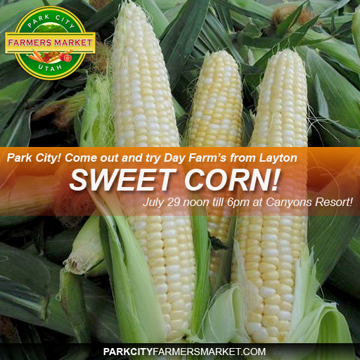 sweet corn copy